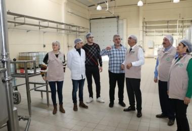Samsun'da Gıda Üretimi Yapan İşyerleri Denetleniyor