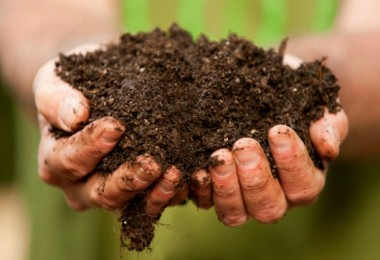 Toprak kaynaklarının sürdürülebilir kullanımı projesi çalıştayı