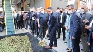 Bakan Pakdemirli: Türkiye, 250 Bin Tonluk Ceviz Üretimiyle Dünyada Dördüncü Sırada