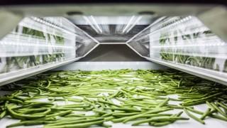 Tomra ayıklama makineleri, büyüyen Organik sebze – meyve pazarında gıda güvenliği ve karlılığı arttırıyor