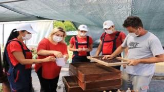 Atakum Belediyesi AtaTohum ile Karadeniz'e öncülük ediyor