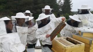 Balparmak ve Muğla Belediyesi'nden Arıcılık Mesleği'nin Geleceği İçin İşbirliği