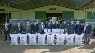 Büyükşehir sertifikalı tohum üretimine başladı