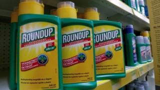 İstinaf Mahkemesi onayladı: Roundup toplatılacak
