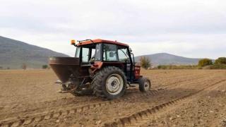 Menteşe'de Kadim Buğdayların Ekimine Başlandı