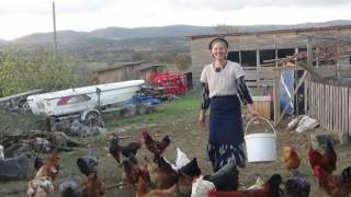 Amerika'dan gelen çift, Kaz Dağları'nda köy hayatı yaşıyor