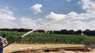 Büyükşehir'den Tarım ve Hayvancılığa 13 Milyon TL'lik Yatırım