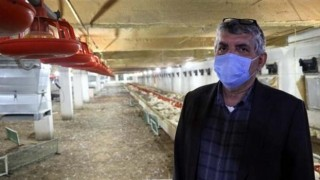 Havalandırma arızalanınca 20 bin tavuk telef oldu, aileyi üzüntüye boğuldu