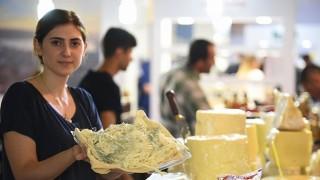 Peynir Atölyesi Başlıyor