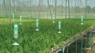 """Egeli ihracatçılar Tarım Haftası'nda """"iklim krizi için organik üret"""" dedi"""
