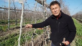 İklim değişikliği gıda arzını tehdit ediyor