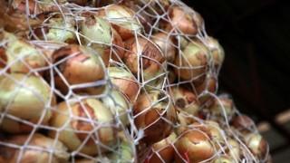 Soğan üreticisi, 1 liraya ürettiği soğanı 60 kuruşa satamadı