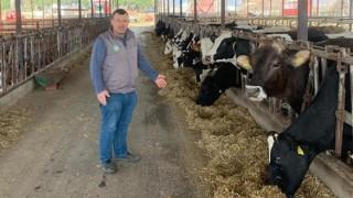 Süt üreticilerine yem zammı darbesi