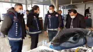 Van'da kaya balığı zannedilen balon balığı can aldı! 2 arkadaştan biri öldü