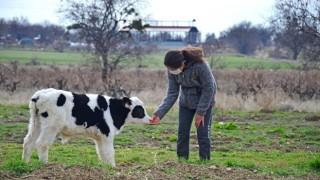 Genç Çiftçi Projesi Üreticilere Nefes Oluyor
