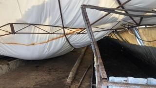 Kocaeli'nde kar nedeniyle ahırın çatısı çöktü