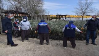 100 bin zeytin fidanı, 100 bin badem fidanı ve 1 milyon adet lavanta fidesi dağıtımına başlandı