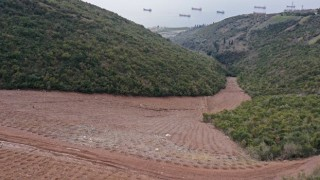 Hereke dolgu alanına 10 bin 500 ağaç dikildi