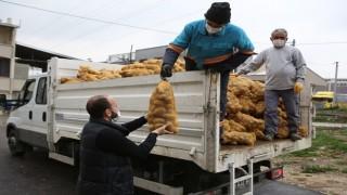Nilüfer Belediyesi'nden patates üreticisine destek