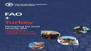 Yeni rapor FAO ve Türkiye'nin güçlü ortaklığını vurguluyor