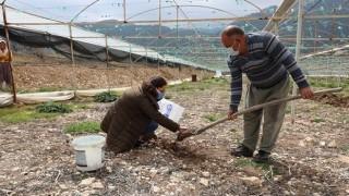 Antalya Büyükşehir Çiftçinin Toprağını Analiz Ediyor
