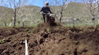Bal Üreticilerine Arı Otu Tohumu Desteği
