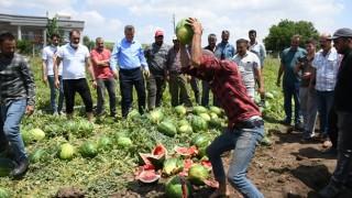 Çiftçilerin karpuz isyanı