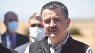 """Pakdemirli: """"Buğdayda Türkiye Kendi Kendine Yeten Bir Ülke"""""""