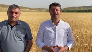 Tutdere: Doğu Anadolu Ve Güneydoğu Anadolu'da En Az Yüzde 50 Rekolte Kaybı Var