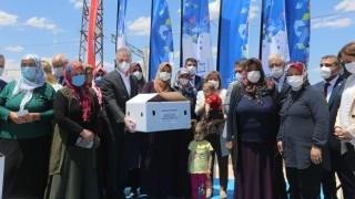 Büyükşehir, Kadın Çiftçilere Bölge İçin Uyumlu 70 Bin Adet Tavuk Dağıtımına Başladı
