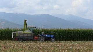 Küresel gıda fiyatları Mayıs'ta hızlı yükseldi