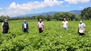 Murat: Patates ve Hububatların Gelişimleri Mutluluk Verici