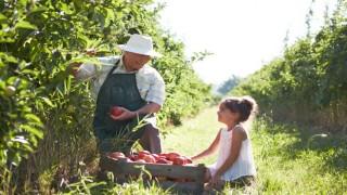 Aileler Bebekleri İçin Doğal Tarıma ''EVET'' Dedi