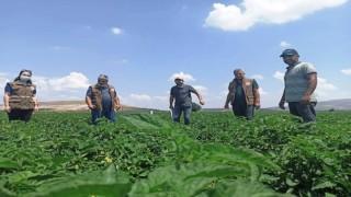 Akhisar İlçe Tarım Müdürlüğü Tarlada, Çiftçinin Yanında