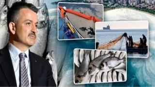 """Bakan Pakdemirli; """"Marmara Denizi'nden Çıkan Balıkların Yenilmesi Ve Tüketilmesiyle Alakalı Herhangi Bir Problem Yok"""