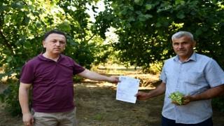 Çiftçilerin emekleri Tarım Kredi sayesinde güvende