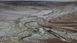 Kars'ta etkili olan dolu ekinlere zarar verdi