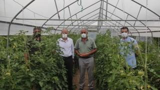 Tarımsal Projeler Çiftçilerimizin Yüzünü Güldürmeye Devam Ediyor…