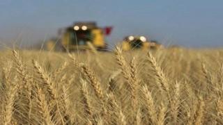 174 bin çiftçi, bankaların takibinde
