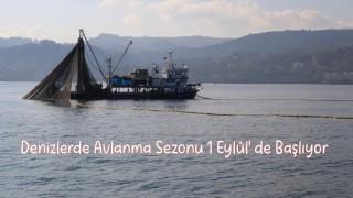 Denizlerde Avlanma Sezonu 1 Eylül'de Başlıyor