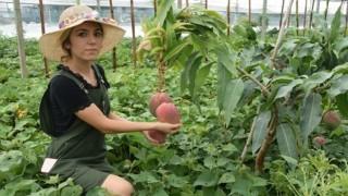 Maliye mezunu gençten ilk hasat
