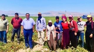 """Gürer: """"Kadın çiftçinin SGK primini devlet karşılayıp, bedelsiz tohum desteği sağlamalı"""""""