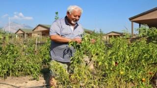 Hobi Bahçeleri için başvurular başladı
