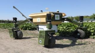 İnsansız tarım robotu geliyor!