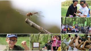 Ormanya'da biyoçeşitlilik kayıt altına alındı