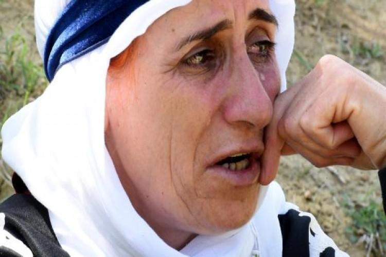30 Koyunu Öldü, '18 Kişilik Ailemizin Tek Geçim Kaynağıydı' Diyerek Ağladı