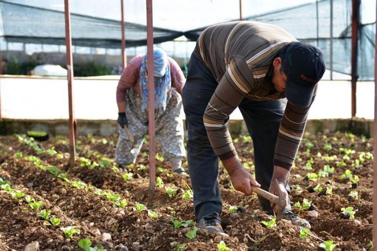 Büyükşehir Antalya Çiftçisine 4 Milyon TL Destek Verdi