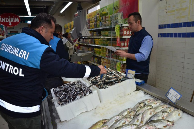 Denizli'de Balık Satan Noktalar Denetlendi