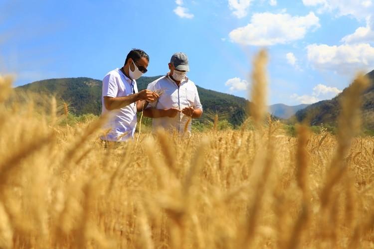 Büyükşehir Destekliyor, Muğlalı Çiftçiler Üretiyor