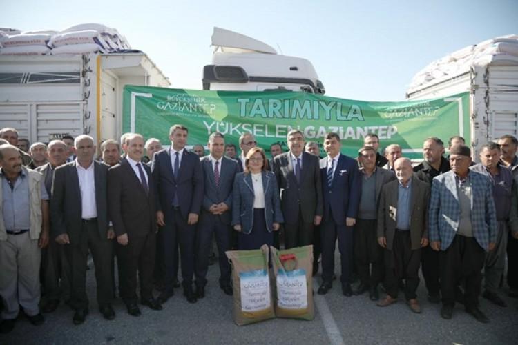 Gaziantep Büyükşehirden Üreticilere 1.090 Ton Tohum Desteği